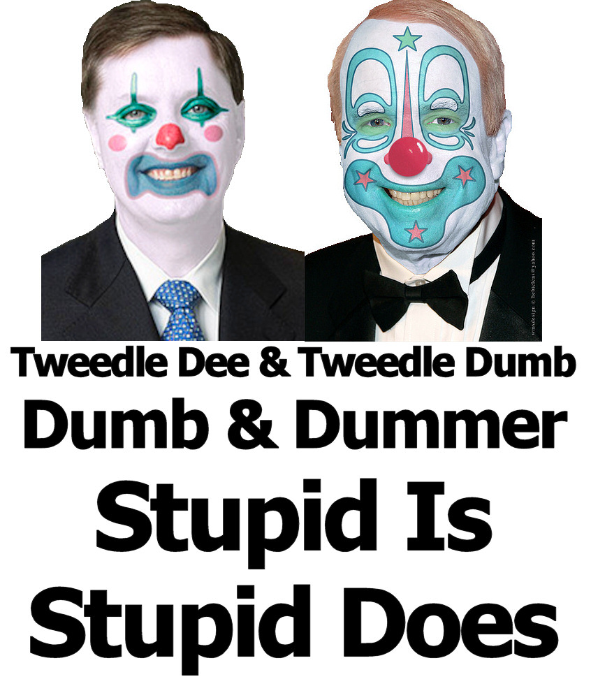 McCain and Graham Dumb and Dumber